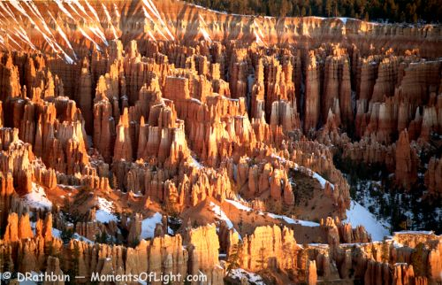 Sunrise from Bryce Point Bryce Canyon National Park Utah